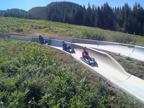 alpine slide fun